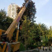轉讓其他2009年大江QY8FA 吊車