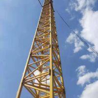 转让山东明龙2010年5013(63)塔吊
